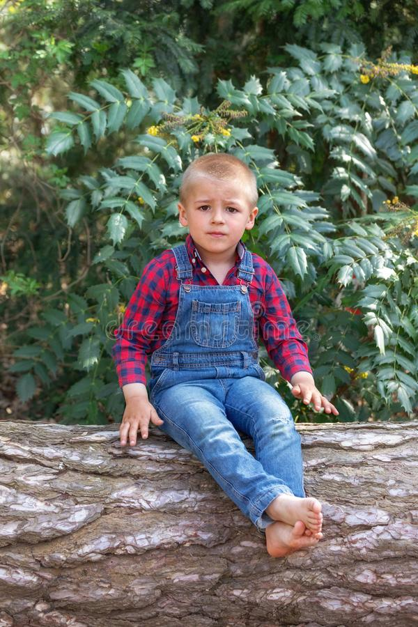 Small boy sitting on the old tree trunk in the park.  royalty free stock photography