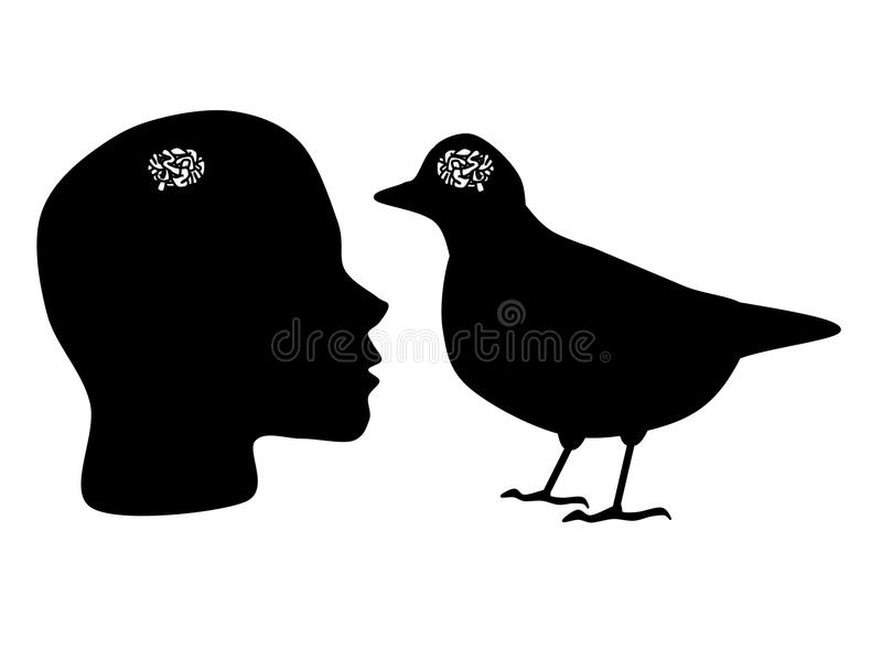 Small brain. Someone who has a brain the same size of a bird vector illustration