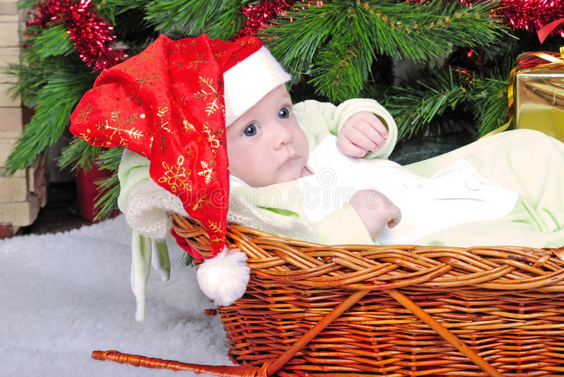Small breast child in basket near new year's fir tree stock photography