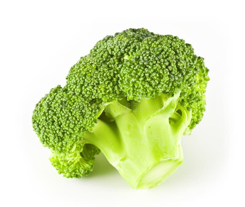 Small Broccoli Royalty Free Stock Image
