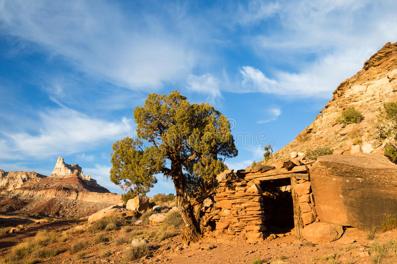 Small building and juniper tree below Temple Mountain. Small building between a boulder and large juniper tree below Temple Mountain in Southern Utah. The stock images