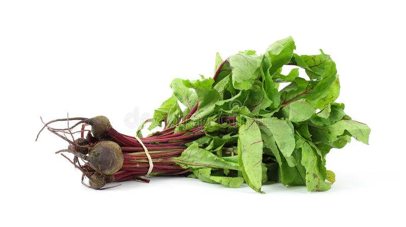 Small bunch of beet greens with beets. Fresh leafy beet greens with beets on a white background stock photo