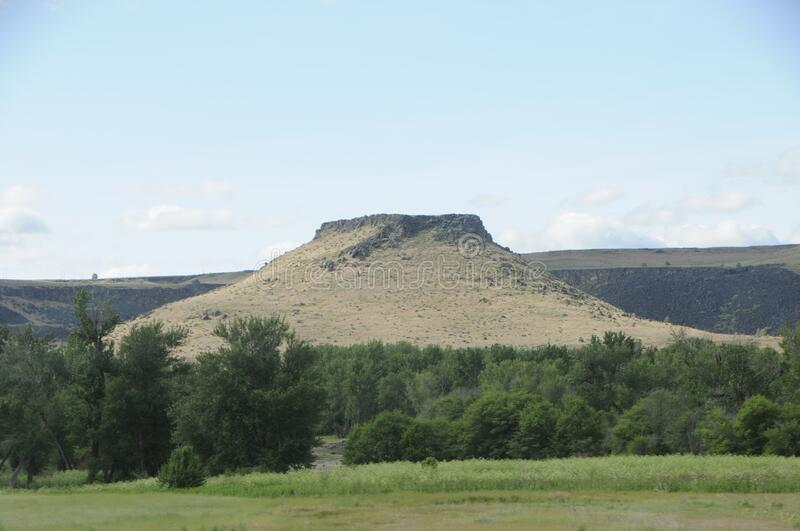 A butte surrounded by trees in Central Oregon stock photo