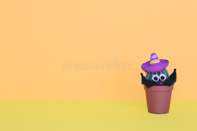 Small cactus in a flowerpot on a trendy background. royalty free stock images