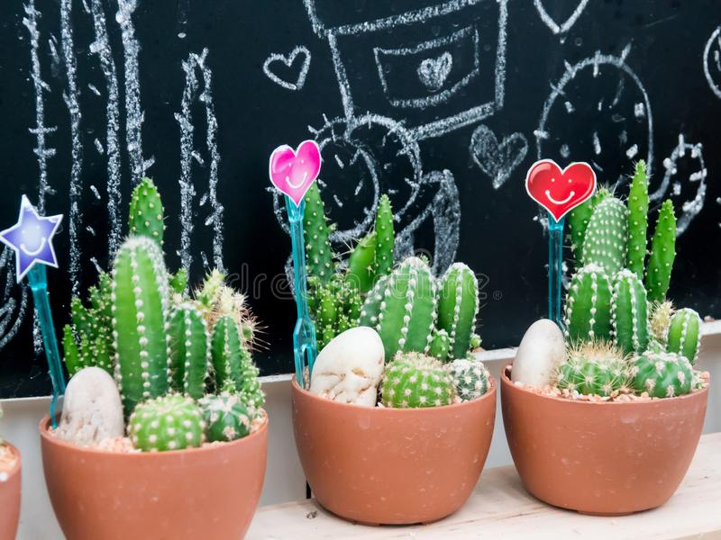 Small cactus in a plastic pot with heart-shaped sign and smile. stock image