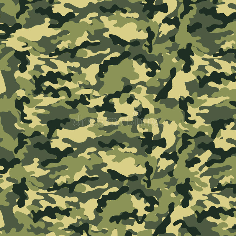 Free Small Camouflage Stock Image - 27343391