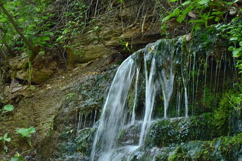 Cascades of water in the forest stock images