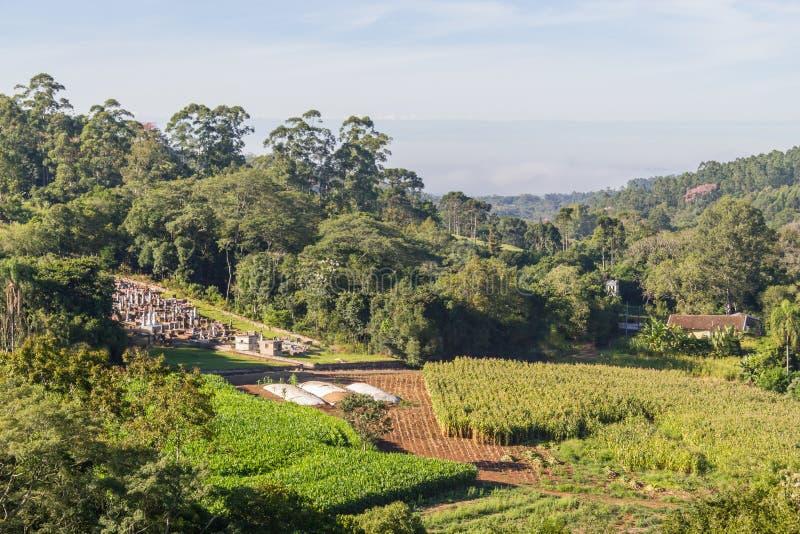Small cemetery, farm, plantation and forest. Venancio Aires, rio Grande do Sul, Brazil royalty free stock photo