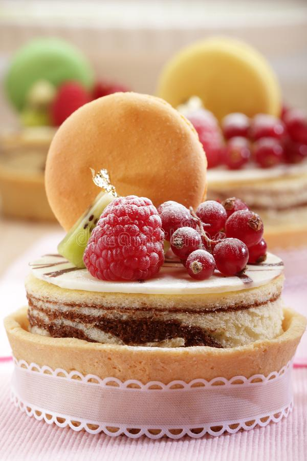 Cheesecake with fruit royalty free stock photos