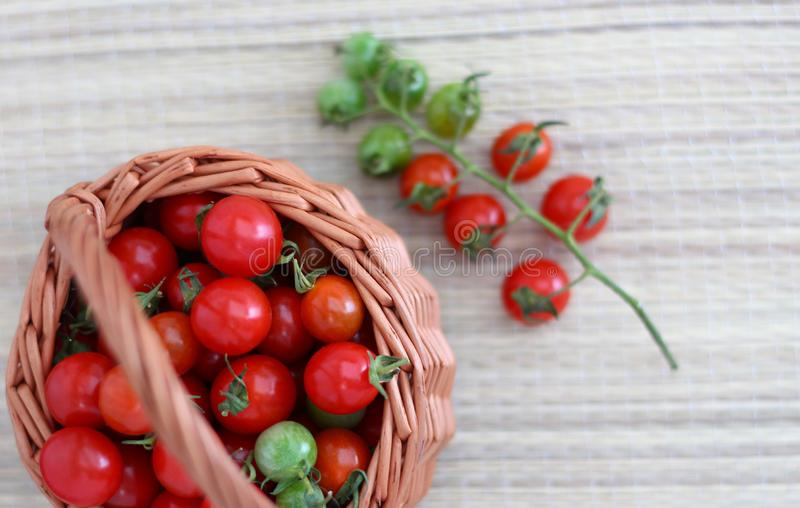 Small cherry tomatoes lie in a basket and on a bamboo napkin royalty free stock photo