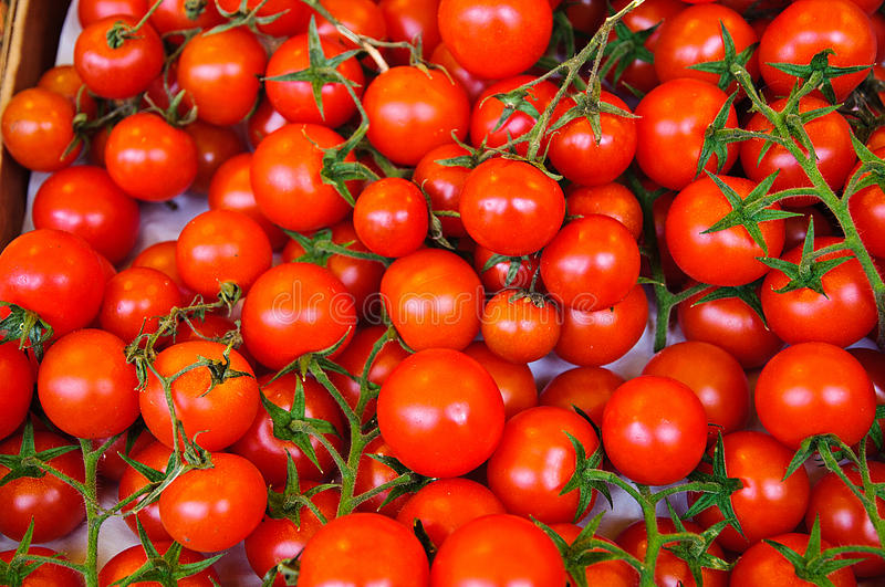 Small Cherry Vine Tomatoes. Bunch of Small Cherry Vine Tomatoes in Market stock photos