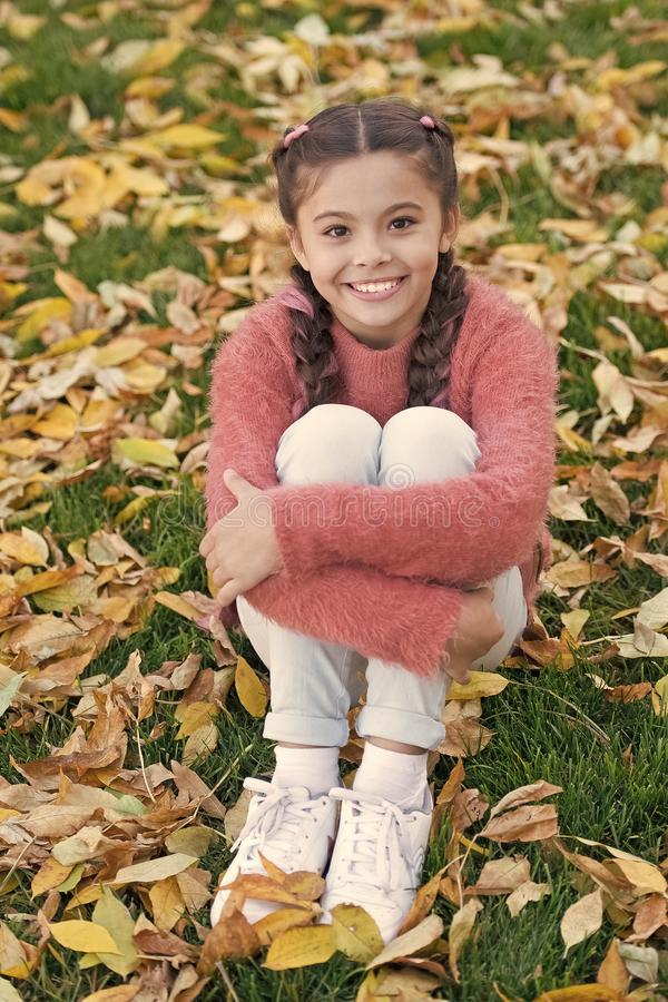 Small child with autumn leaves. Happy little girl in autumn forest. Autumn leaves and nature. Happy childhood. School royalty free stock photo