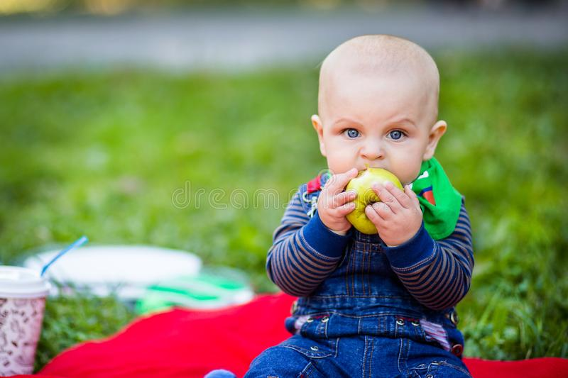 A small child bites a large green apple . royalty free stock photography