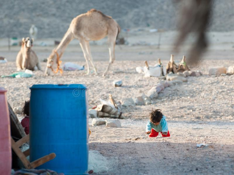 A small child is crawling along a street in a Bedouin village in the Sinai Peninsula. The second child hid behind the barrel. A small lonely shaggy child crawls royalty free stock photography