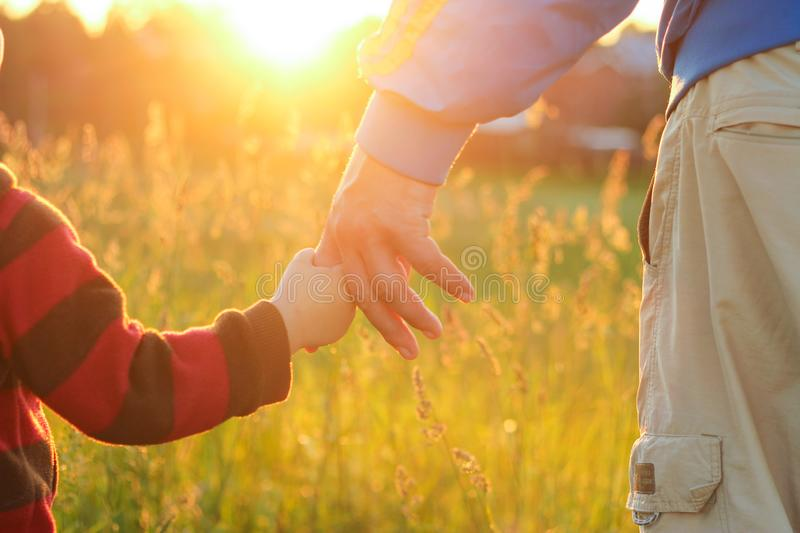 A small child holds an adult`s hand. evening walk, joint rest, time together. family value royalty free stock photo