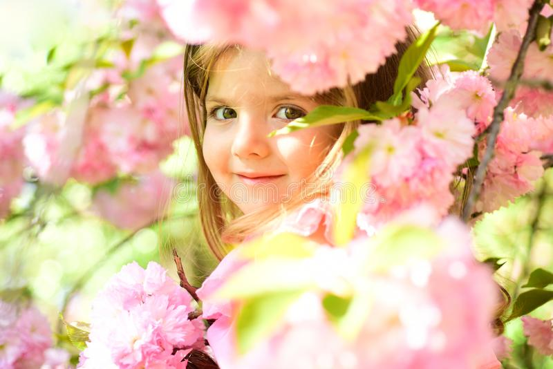 Small child. Natural beauty. Childrens day. Springtime. weather forecast. Summer girl fashion. Happy childhood. Little stock photos