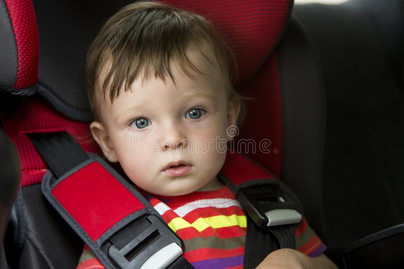 Small child sits in the automobile armchair, fastened by seat belts.  royalty free stock photo