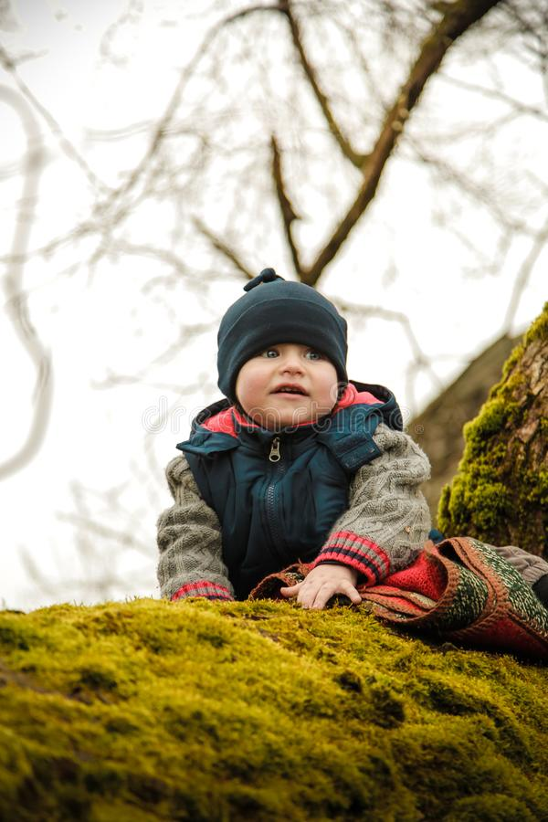 A little boy is sitting on an old tree overgrown with moss stock images