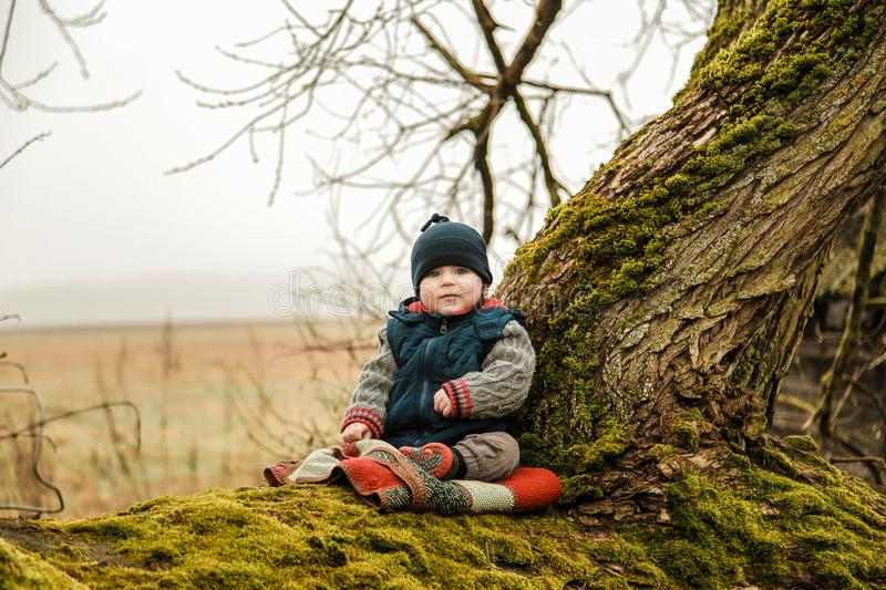 A small child sits on an old tree overgrown with moss stock photos