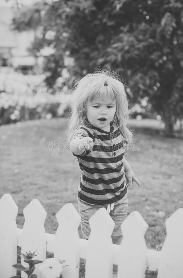 Small child on vacation. child or small boy outdoor near white wooden fence. Small child on vacation. child or small boy outdoor in garden with flowers and green royalty free stock photo