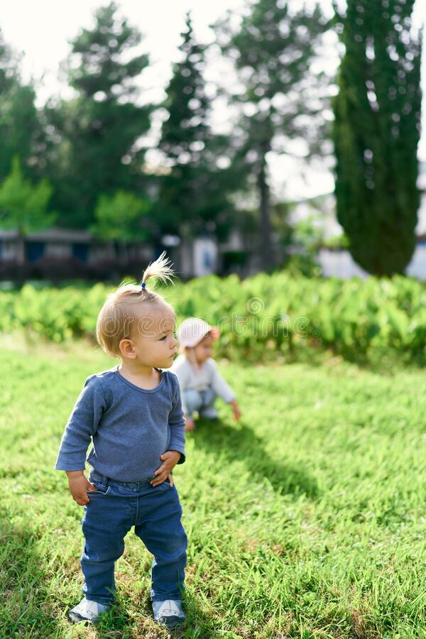 Free Small Child With A Ponytail Stands On A Green Lawn And Looks To The Side Stock Image - 221470281