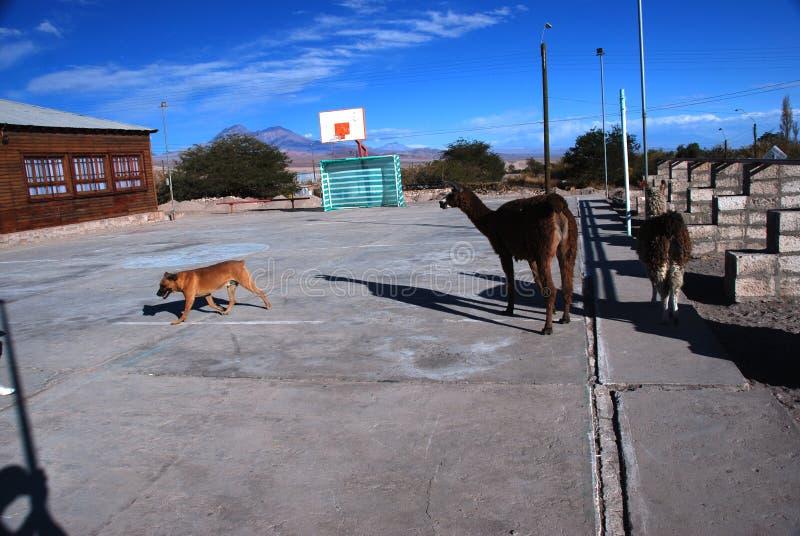 Small Chilean village basketball court stock photos