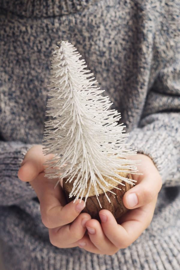 Small Chirstmas tree in children`s hands stock image