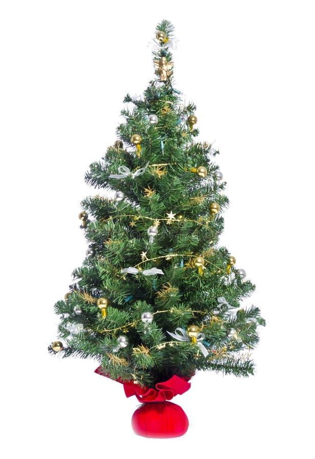 Small Christmas Tree. A small Christmas tree isolated on white royalty free stock image
