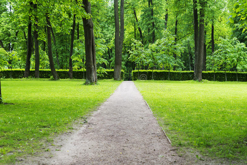 A small clearing with trees, lawn and path. A small clearing with trees, lawn and path in Park royalty free stock images