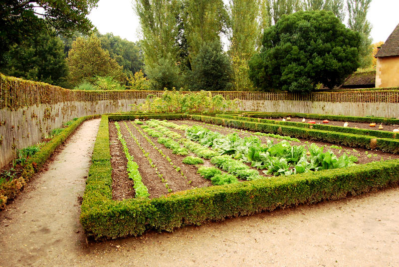 Small cottage garden in the Queen's hamlet, Versailles, France royalty free stock photos