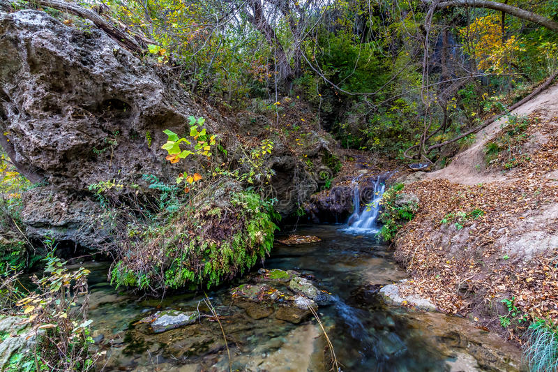 Small Creek in Forest in Texas. Babbling Crystal Clear Small Stream Spilling into the Colorado River from Gorman Falls in Texas royalty free stock image