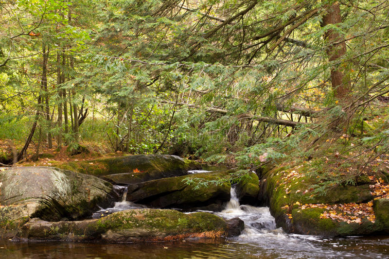 Download Small Creek In Muskoka, Ontario Stock Image - Image: 21524087