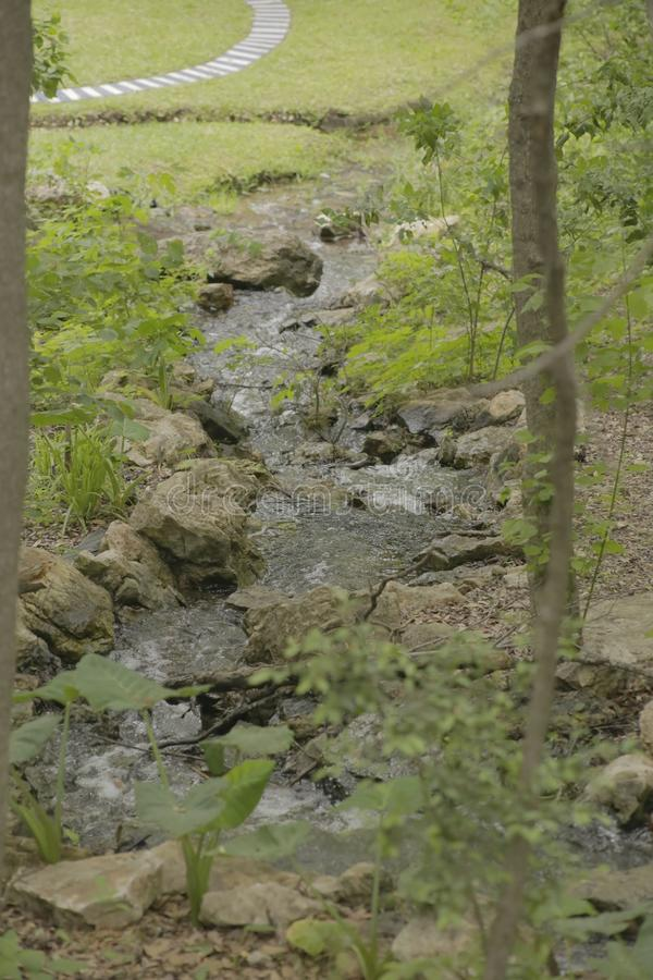 Small Creek at a park royalty free stock photo