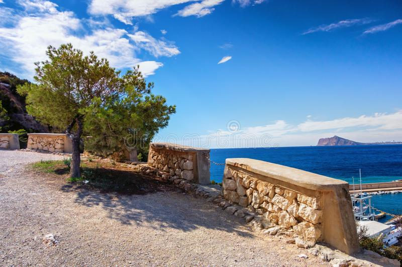 Small Cupressaceae tree on the coast of Calpe with the sea. Small pinetree on the coast of Calpe with a small island in the background and nice clouds royalty free stock photography