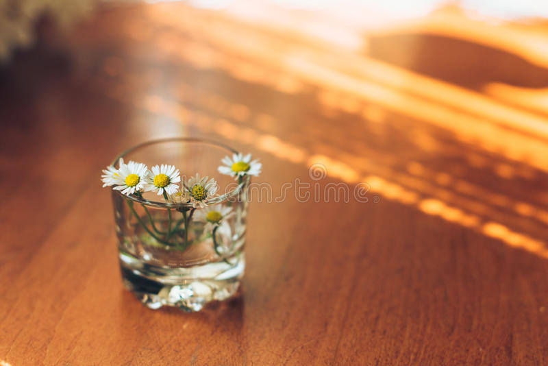 Small daisies in glass vase on a wooden background. royalty free stock photos