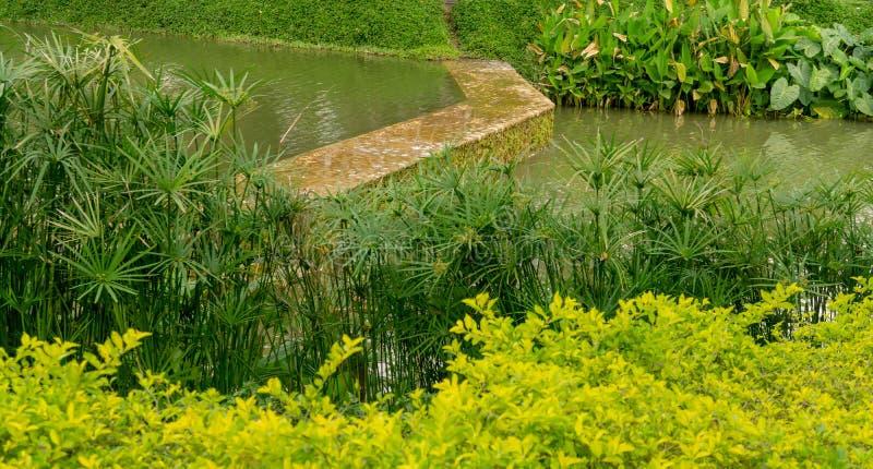 A small dam in a lake, among green shrub and bush. A small dam and clear water in a lake, among green shrub and bush royalty free stock photos