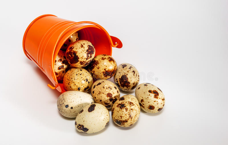 Small decorative buckets filled quail eggs. Small decorative buckets filled quail eggs royalty free stock photos