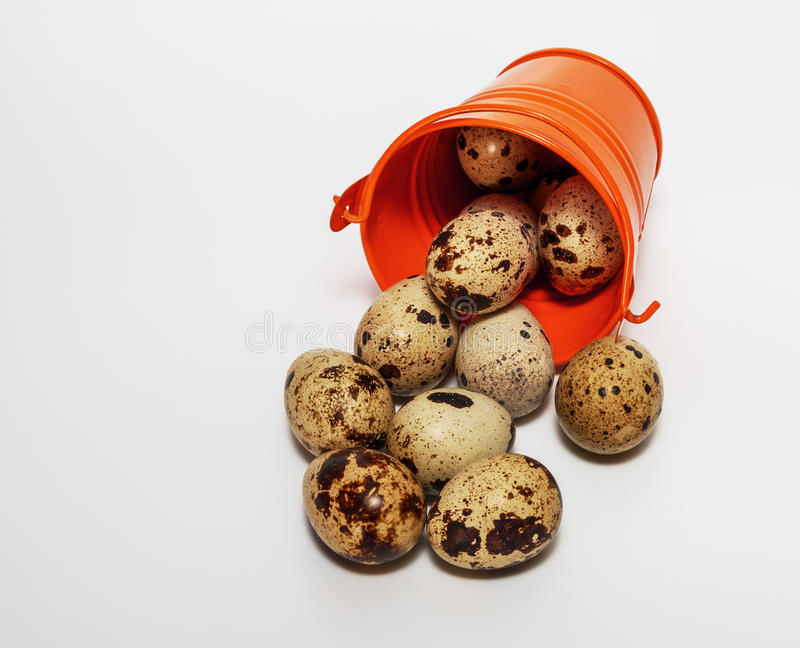Small decorative buckets filled quail eggs. Small decorative buckets filled quail eggs close up stock images