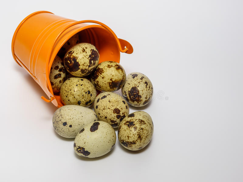 Small decorative buckets filled quail eggs. Small decorative buckets filled quail eggs close up stock photo