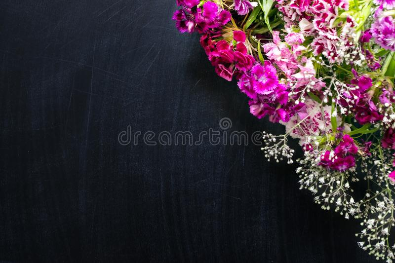 Small delicate pink, purple, lilac and white flowers angle frame stock photography