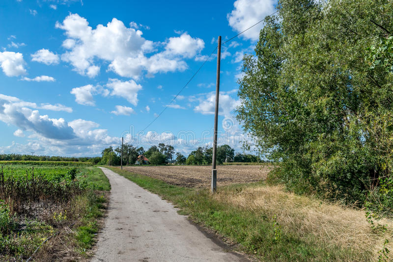 Small dirt road in village between fields royalty free stock photo