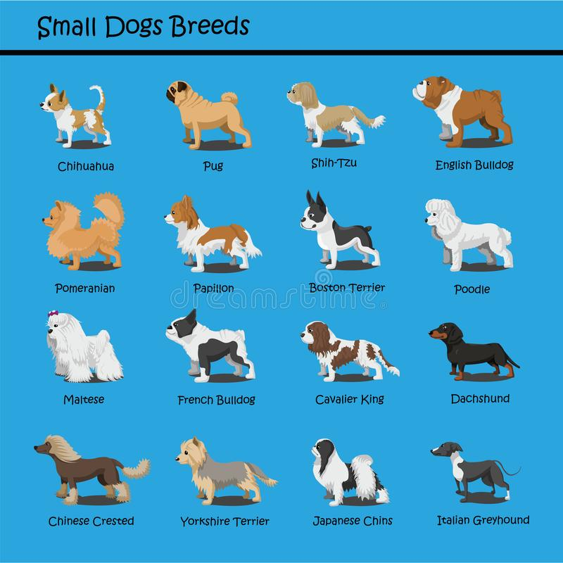 Small Dog Breeds Dog cute Cartoon Design Vector puppy dog Cartoons Design royalty free illustration