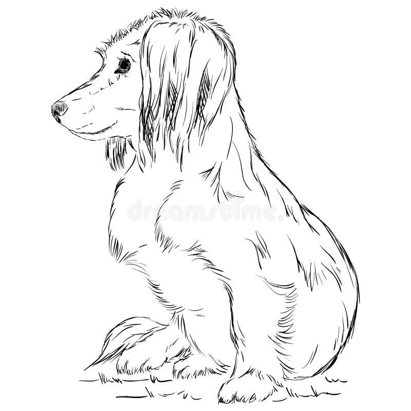 Small dog royalty free illustration