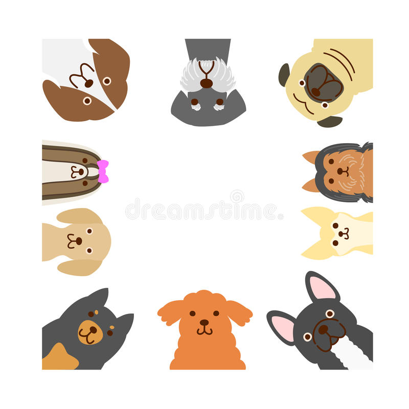 Small dogs square frame stock illustration