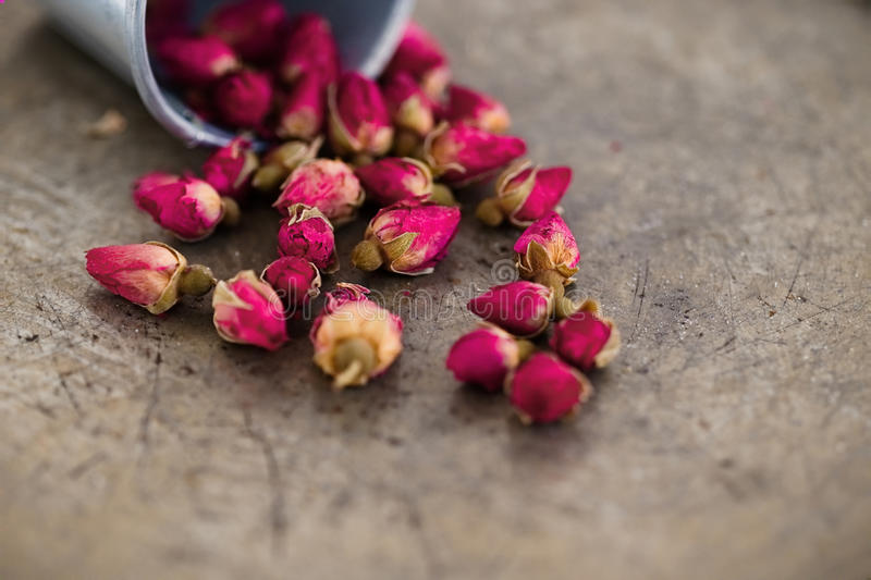 Small Dried Pink Rose Buds stock photos