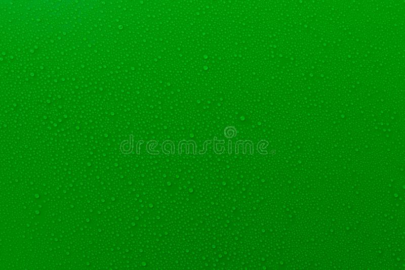 Small droplets of water on a green, matte background illuminated with a delicate light. Small droplets of water on a green, matte background illuminated with a stock image