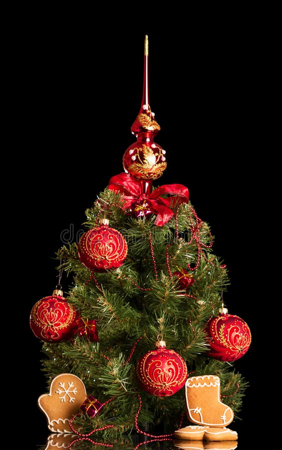Small elegant Christmas tree next to the gingerbread isolated on black. Background stock photos