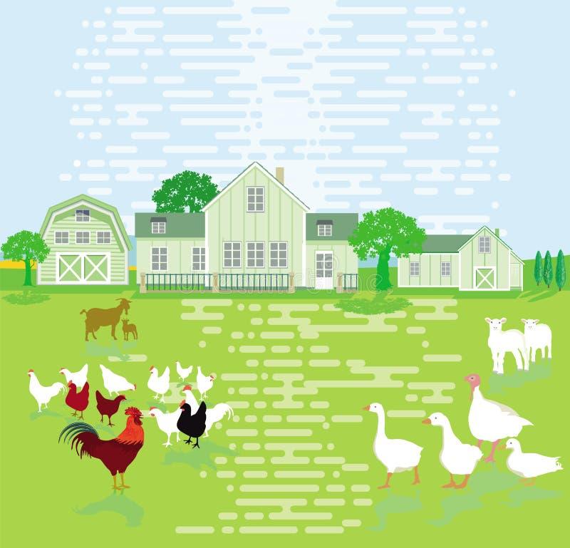 Small farm with farm animals stock illustration