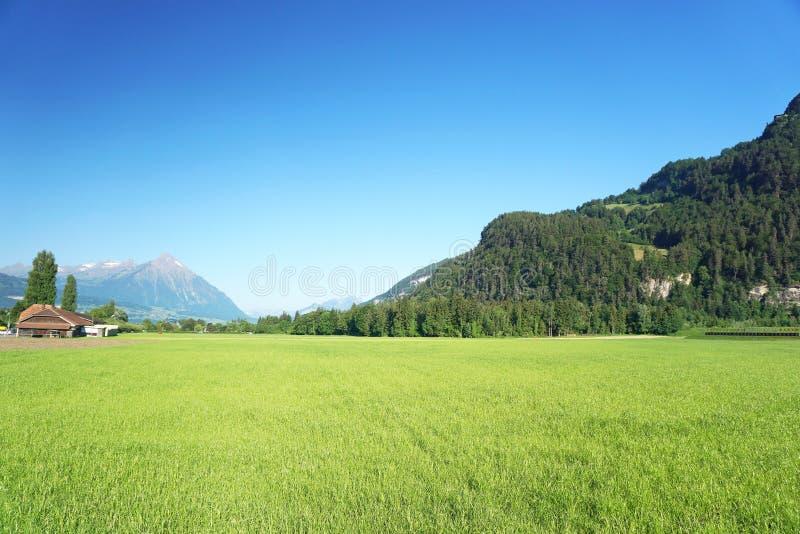 Small farm in swiss alps stock photos