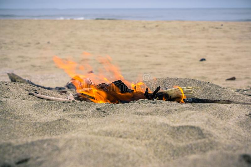 Small fire made using driftwood. On the Pacific Ocean coastline, California stock image